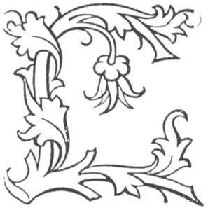 Готическая буква «L» (Эргарт Радтольд)