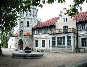 "На снимке: ""замок"" Орлова-Давыдова."
