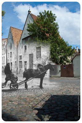 Tallinn-15