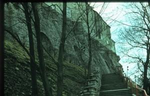 Лестница Паткула. Когда-то деревья тут были большими...