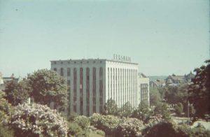 Вид с горки Харью, на площадь Вабадузе. Сама площадь, отсюда, конечно, не видна. Она утопает за кронами озеленевших деревьев.  Таллин 1939 г.